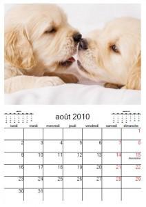 calendrier 2010 chien
