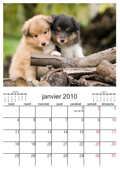 Calendrier Animaux.Calendrier 2018 Gratuit Calendrier Mural Chiens 2010